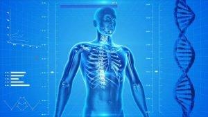 Fasten was passiert im Körper, wir sagen es Ihnen – Paastoa.com